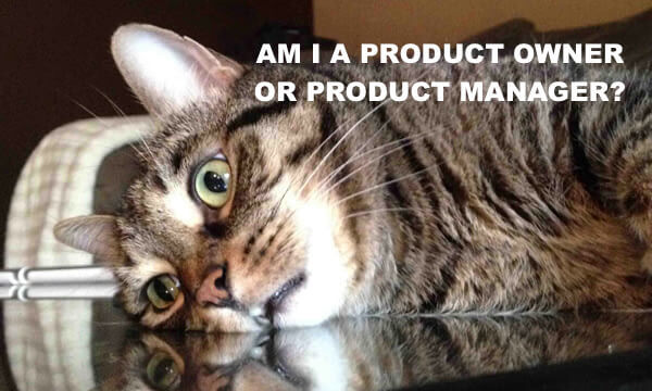 Product owner Product manager