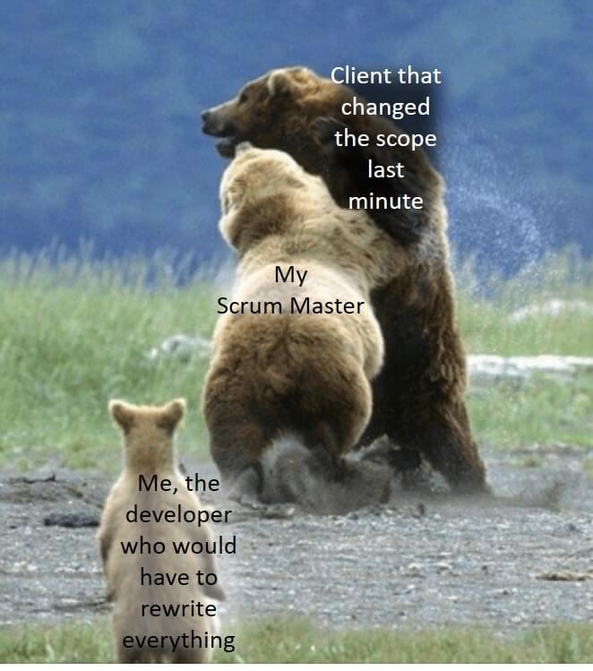 Dobry Scrum Master